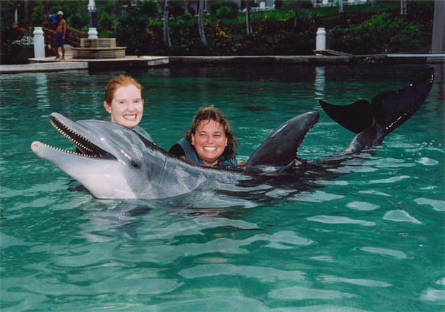 Lisa and I swimming with the dolphins in Hawaii